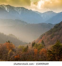 Landscape of trees and mountains at Gassho-zukuri Village, Shirakawago, Japan