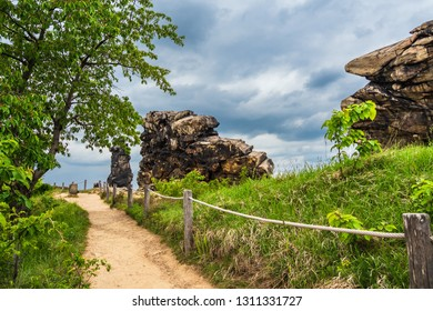 Landscape with trees and rocks in the Harz area, Germany.