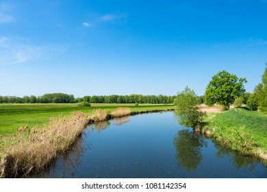 Landscape with trees in the Spreewald area, Germany.