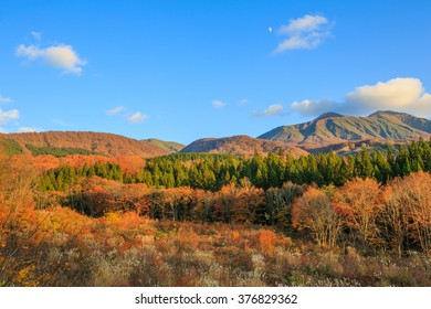 Landscape of trees turning color in autumn with high mountain - Senboku, Akita, Japan