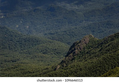 Landscape of tropical green forest seen from the top of a mountain in Brazil.
