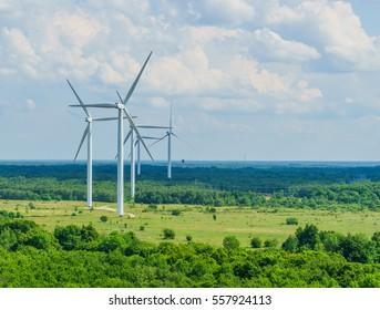 Coniferous Forest Natural Renewable Resources