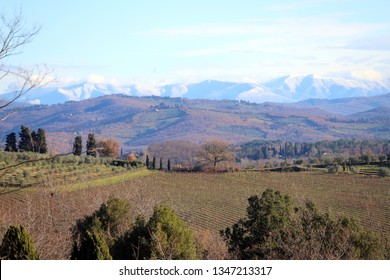 Landscape of Tuscany in autumn: hills, farmhouses, olive trees, cypresses, vineyards. The hills of Chianti south of Florence