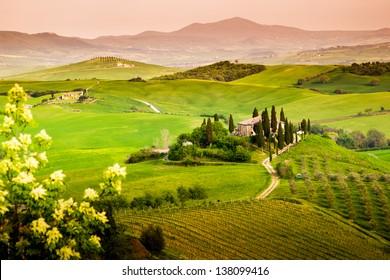 Landscape, Tuscany - Italy