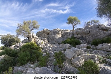 Landscape with unusual looking limestone rocks in the Lluc area on a sunny winter day in Mallorca, Spain.