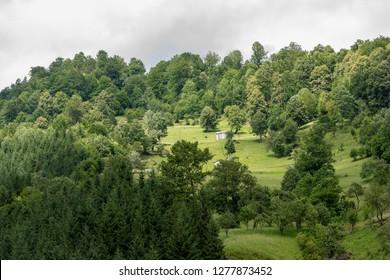 Landscape in Vaser Valley, Bucovina,  Romania