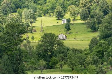 Landscape in Vaser Valley, Bucovina,  Romaniaa