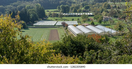 Landscape with vegetable and fruit growing areas and foil tents in Italy