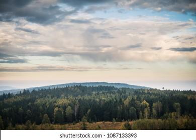 Landscape view of amazing czech woods - Brdy.