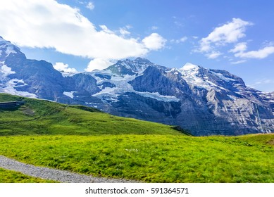 A landscape view of beautiful fresh green field in front of  snowcapped Alps mountain background, view from a train window, from Switzerland to Austria.