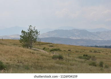 Landscape view of the Colorado Front Range with atmospheric perspective
