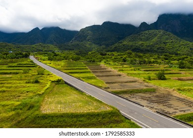 Landscape View Of Diamond Avenue (King Kong Tadao Bike Trails) And Paddy By The Road Next To The Coast Of Pacific Ocean, Taitung, Taiwan Aerial view of Taitung Beautiful countryside landscape.