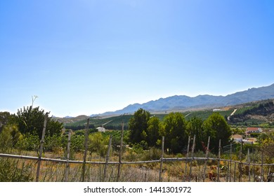 Landscape view of farmland, mountains in sunny Spain.