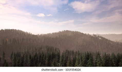 Landscape - View of a forest with clouds at day