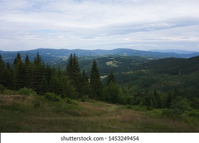 Landscape view from Great Sosov, peak - Wielki Soszow - Velky Sosov. Mountain on czech-polish border in Beskydy. Landscape photo with trees, mountains and clouds. Cloudy day.