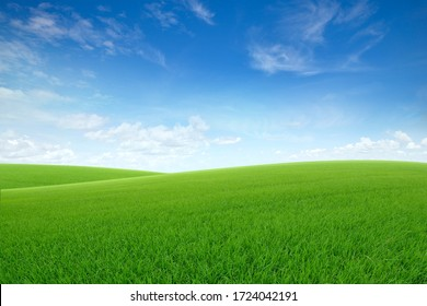 Landscape view of green grass on slope with blue sky and clouds background.