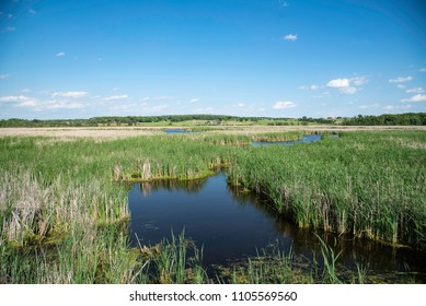 Landscape view of Horicon Marsh