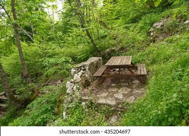 Landscape view of intense Black Sea forests with green trees, meadow area, and wooden table.