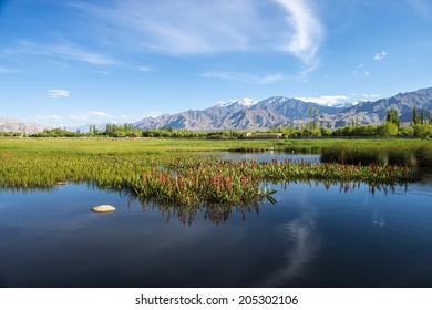 Landscape view of Leh Ladakh, Northern India.