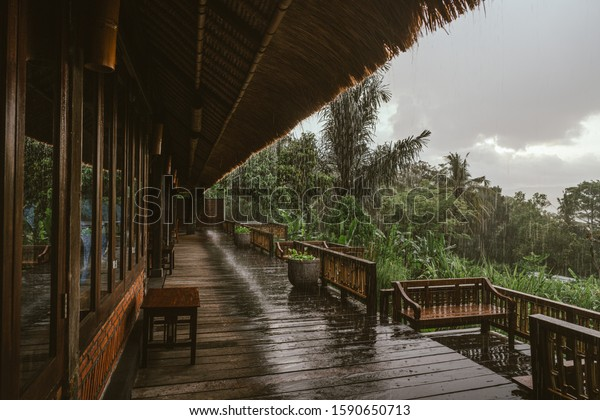 Landscape view on the tropical forest from the house due to the rain season in Bali island