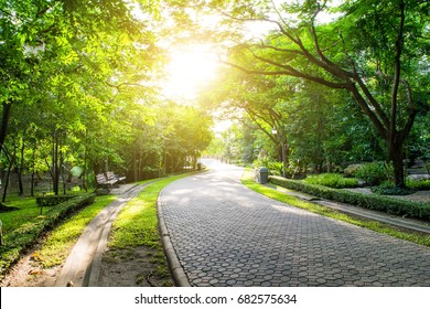 The landscape view of the park has a splendid sunrise from the beautiful and warm frontage through the shadow of road area in park suitable for promenade in happy hour.