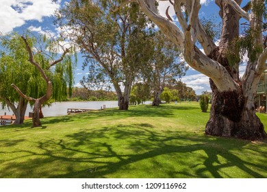 Landscape view of parkland on banks of the Murray River near Bowhill in South Australia.