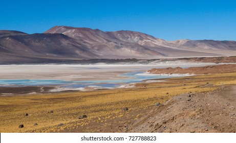 """landscape view in pastel colours of a frozen lake in the """"lagunillas altiplanicas"""" region of the Atacama desert in Chile"""