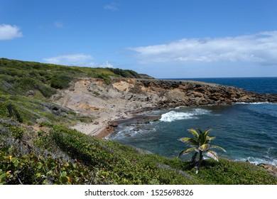 Landscape view of Presqu'ile de la Caravelle, Tartane, Martinique, Caribben