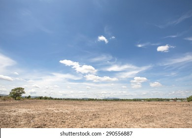 Landscape view of rice field after havest in lampoon thailand at noon sunlight with blue sky background