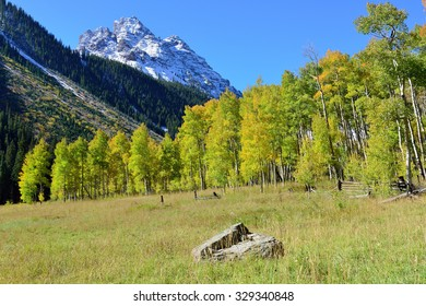 landscape view of the snow covered mountains and colorful yellow aspen during foliage season in Colorado