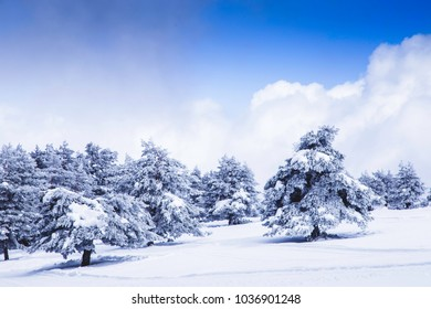 Landscape view in the snowy mountain