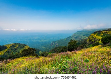Landscape with view of valley and flowers