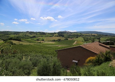 Landscape view of vineyards and hills near St. Gimignano in the North of Italy in Summer time.