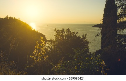 Landscape view in warm sunset colors of shore with hills, trees and green plants in foreground