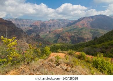 Landscape view while hiking Waimea Canyon on the island of Kauai
