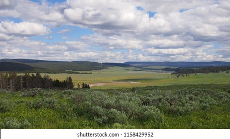 A landscape view in Yellowstone National Park