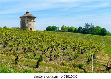 Landscape of vineyards and countryside, and old keep tower, in Beaujolais, Rhone department, France