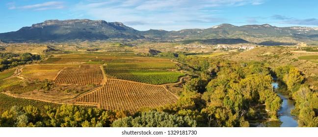 Landscape with vineyards at La Rioja from Briones village, Spain