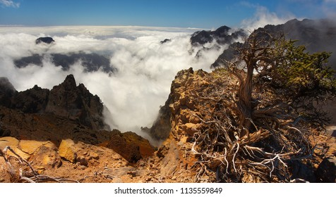 Landscape in the volcanic crater Caldera de Taburiente, Island of La Palma, Canary Islands, Spain