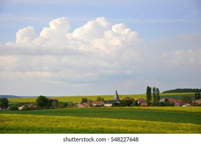 Landscape in vosges, France with fields of rapeseed