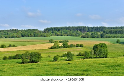 landscape in Walloon, province Namur in Belgium in summer