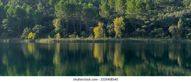 landscape with water and trees with magnificent colors