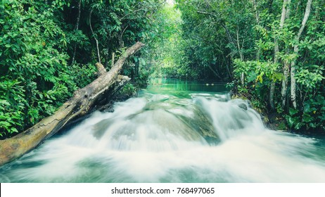 Landscape of a waterfall on Formoso river in Bonito - MS, Brazil. River with transparent green water surrounded by nature. Tourism place for aquatic adventures and eco tour.
