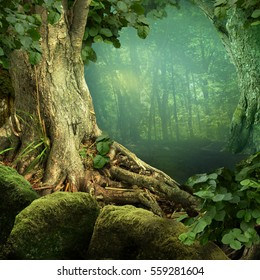 Landscape with weird old tree, roots, mossy stones, blue haze in forest