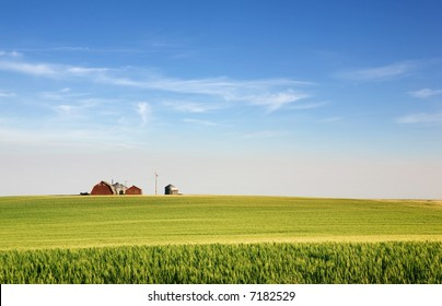 A landscape with wheat and a farm on the horizon