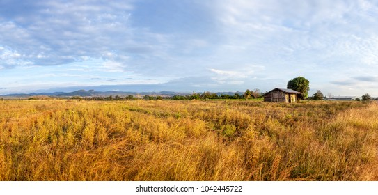 landscape whit clouds in Thailand and an small house on the field