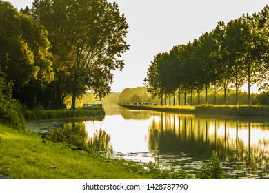 Landscape with widening in Aarkanaal in Alphen aan den Rijn with water vapor in warm light sunrise with both sides rows of poplar banks covered with reeds and moored boats