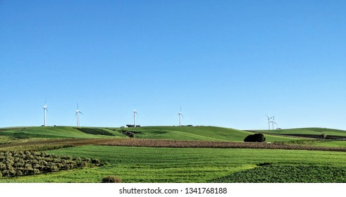 Landscape with wind blades in the background.