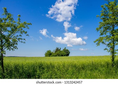 Landscape window, idyll with green meadow and wide sky