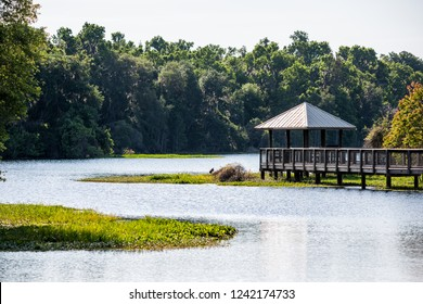 Landscape of wooden boardwalk gazebo viewing deck in marsh swamp in Paynes Prairie Preserve State Park in Gainesville, Florida